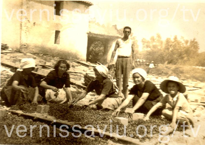 Escampant la pansa (Llocnou,1949)